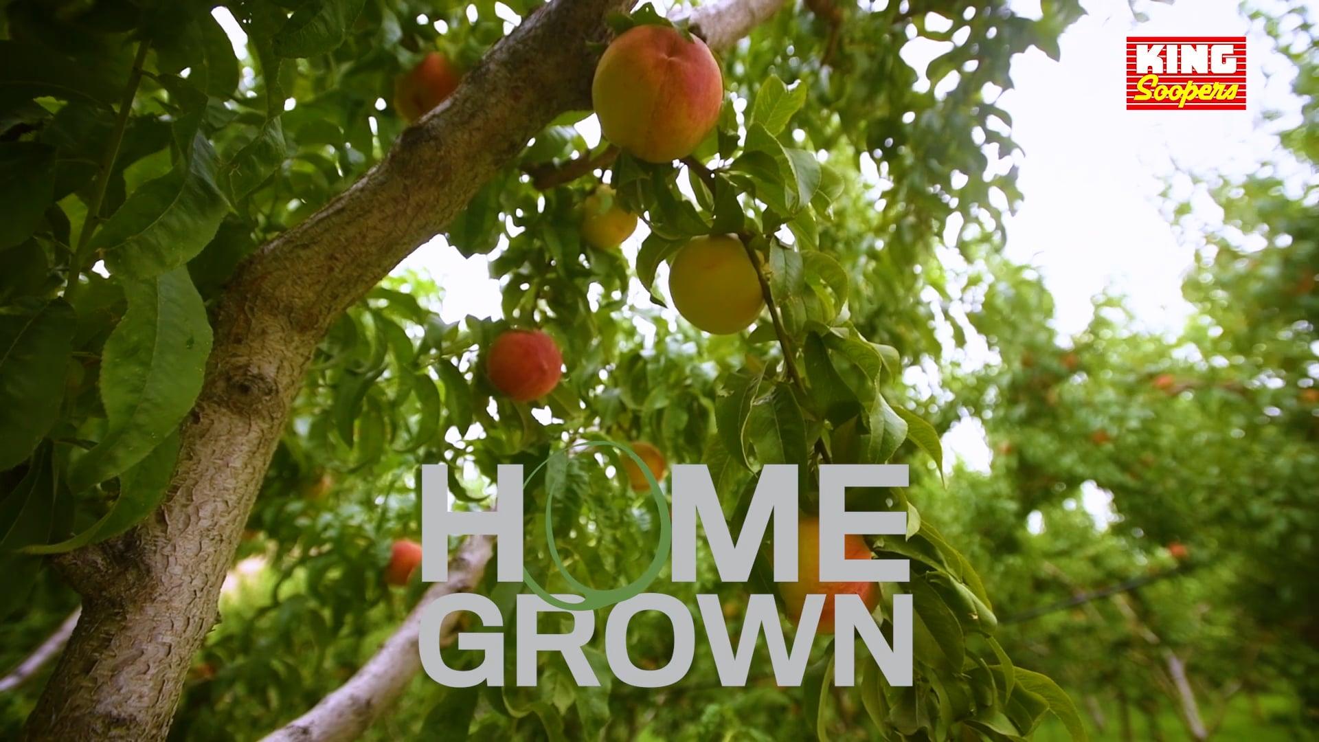 Homegrown: Palisade Peaches