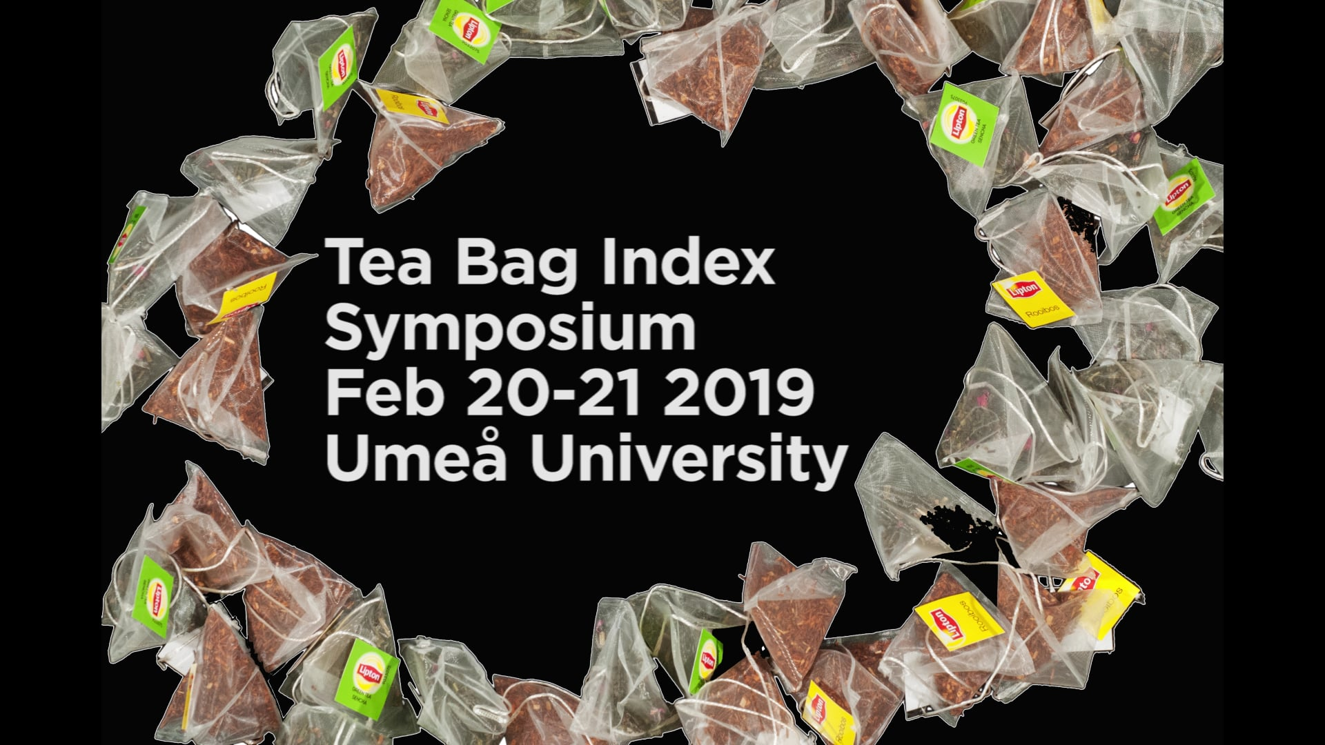 Film: Tea-time for scientists