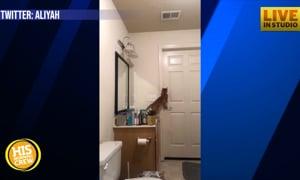 Cat Story: Hidden Camera Reveals How Sneaky Cat Escapes