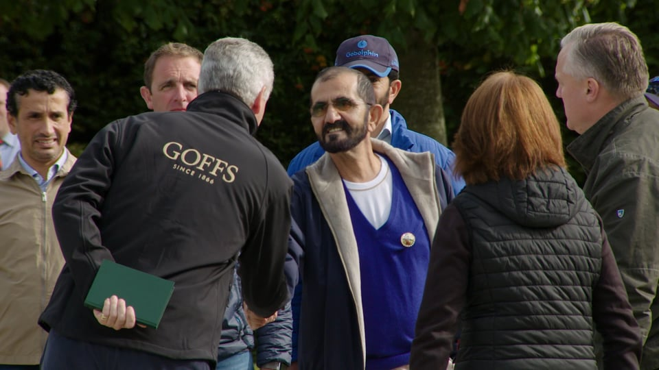 2018 Goffs Orby Highlights