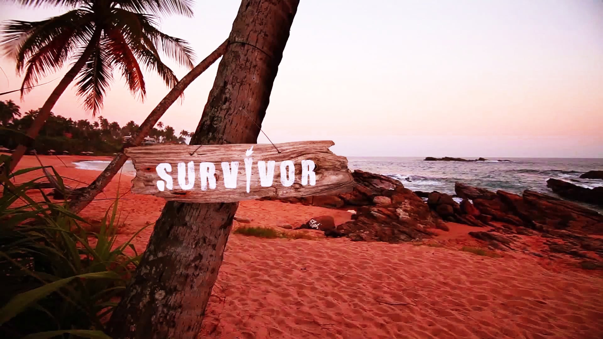 Survivor | show package