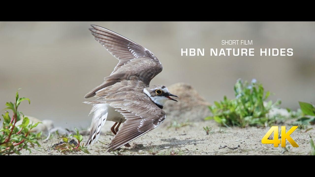 HBN Nature Hide - short film