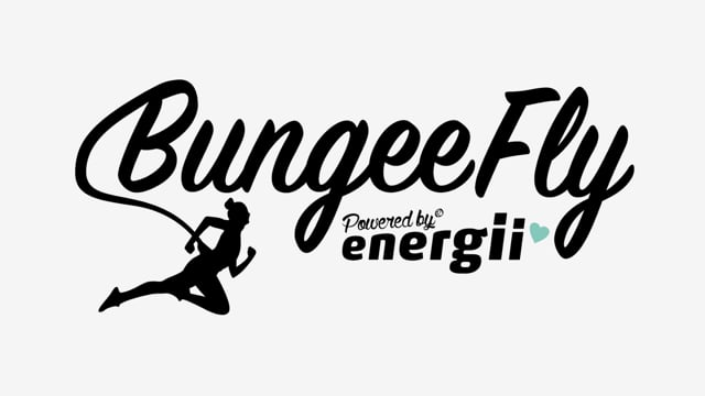 BunGeeFly V3 Final