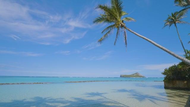 Oahu Beaches, Hawaii - 2