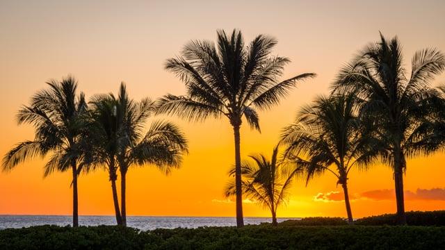 Hawaii, Oahu-film-1