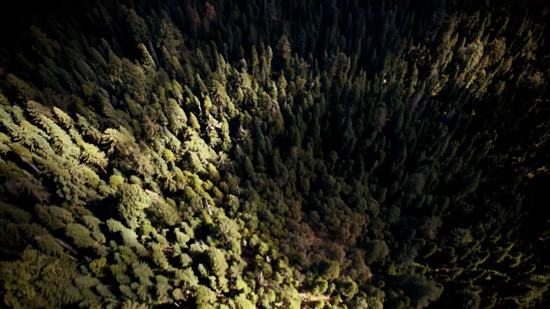 Air Crash Confidential - The Nevada Triangle Full Ep