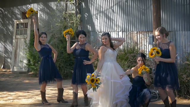Tanner+Stephanie Wedding Highlights, Glover Ranch, Tucson AZ - 1min Teaser p.1