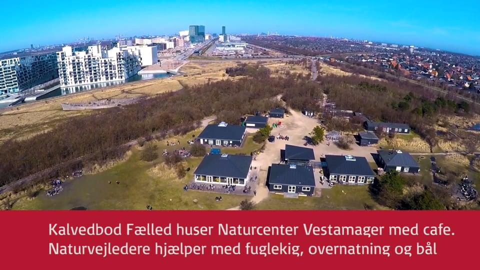 Indenfor 10 Minutter - Vestamager - Naturcenter Amager - Amager Fælled