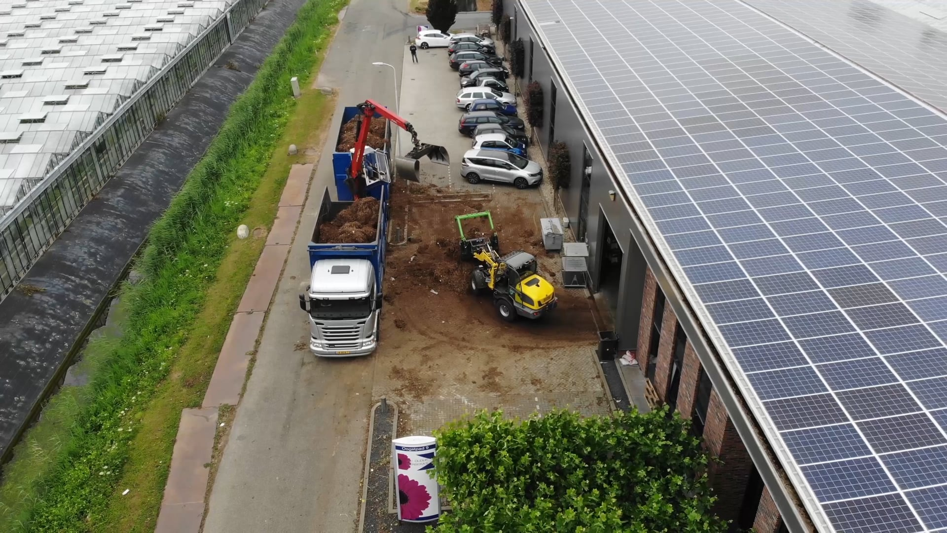 Crop change at Jac. Oudijk Gerberas is done
