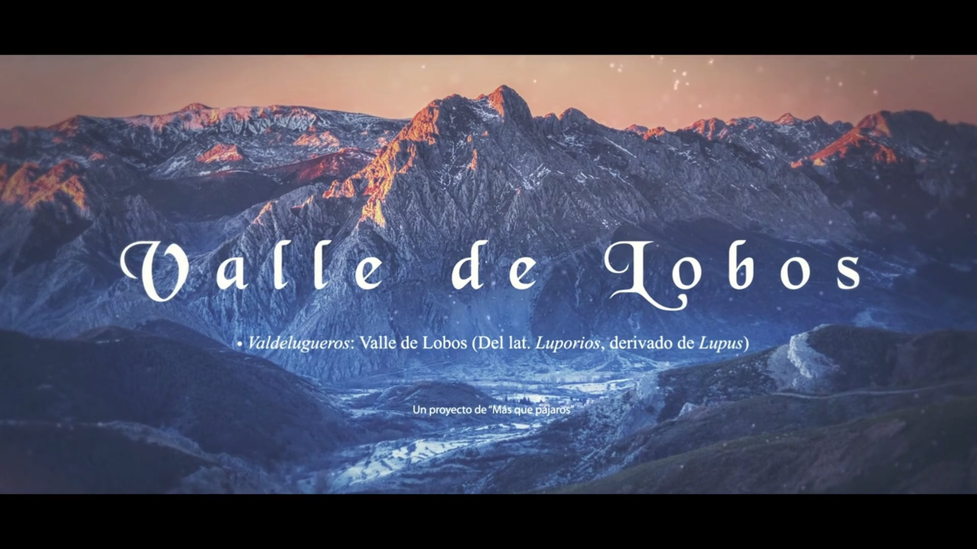 Valle de Lobos Trailer