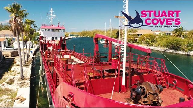 Atlantic Breeze Shipwreck 2019
