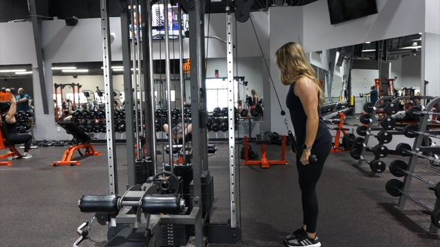Cable Rope Tricep Pressdowns