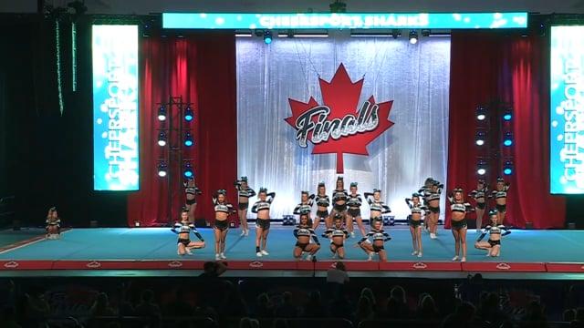 Cheer Sport  Queensland Sharks - Canadian Finals Level 5R