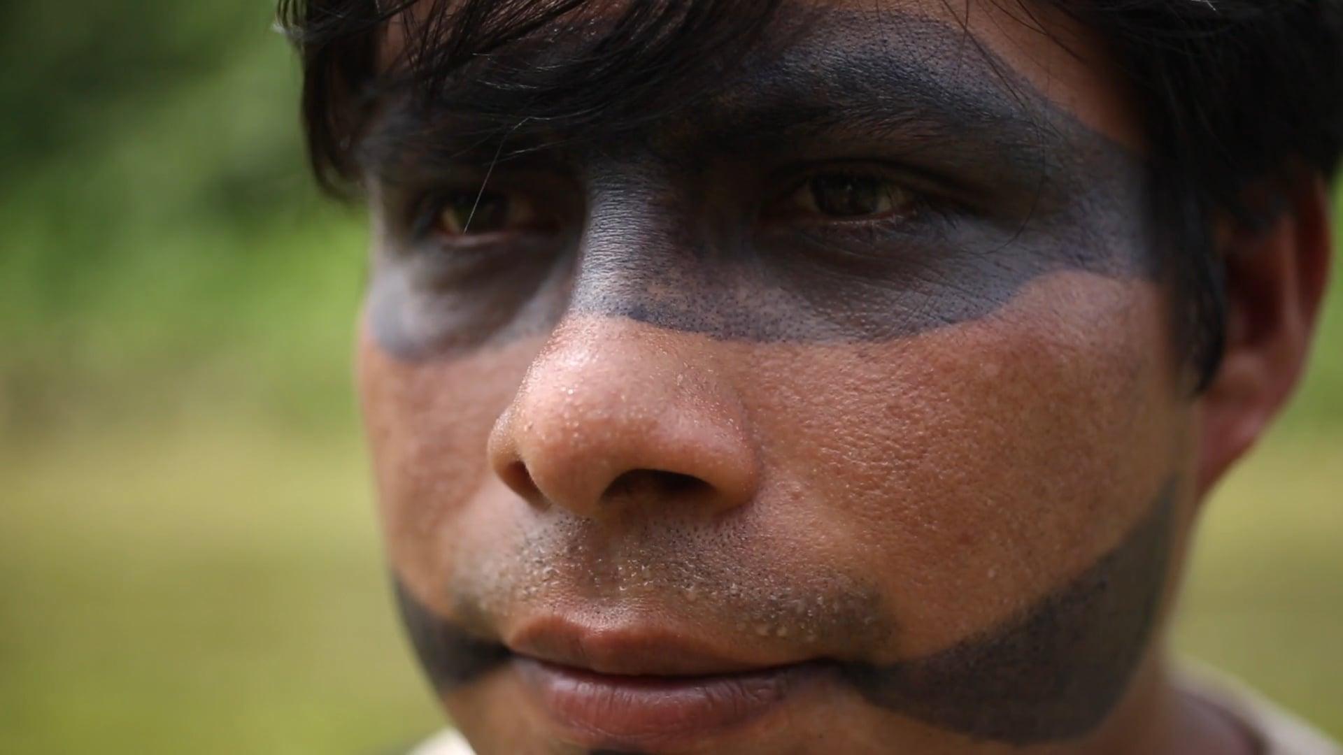 Pachamama Alliance Work in the Amazon