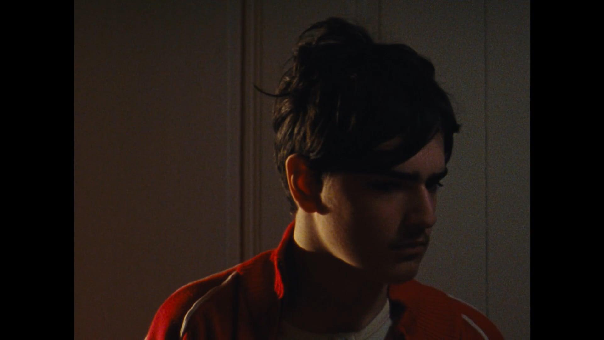 MICHIEL VENMANS (2017) | Director's Showreel