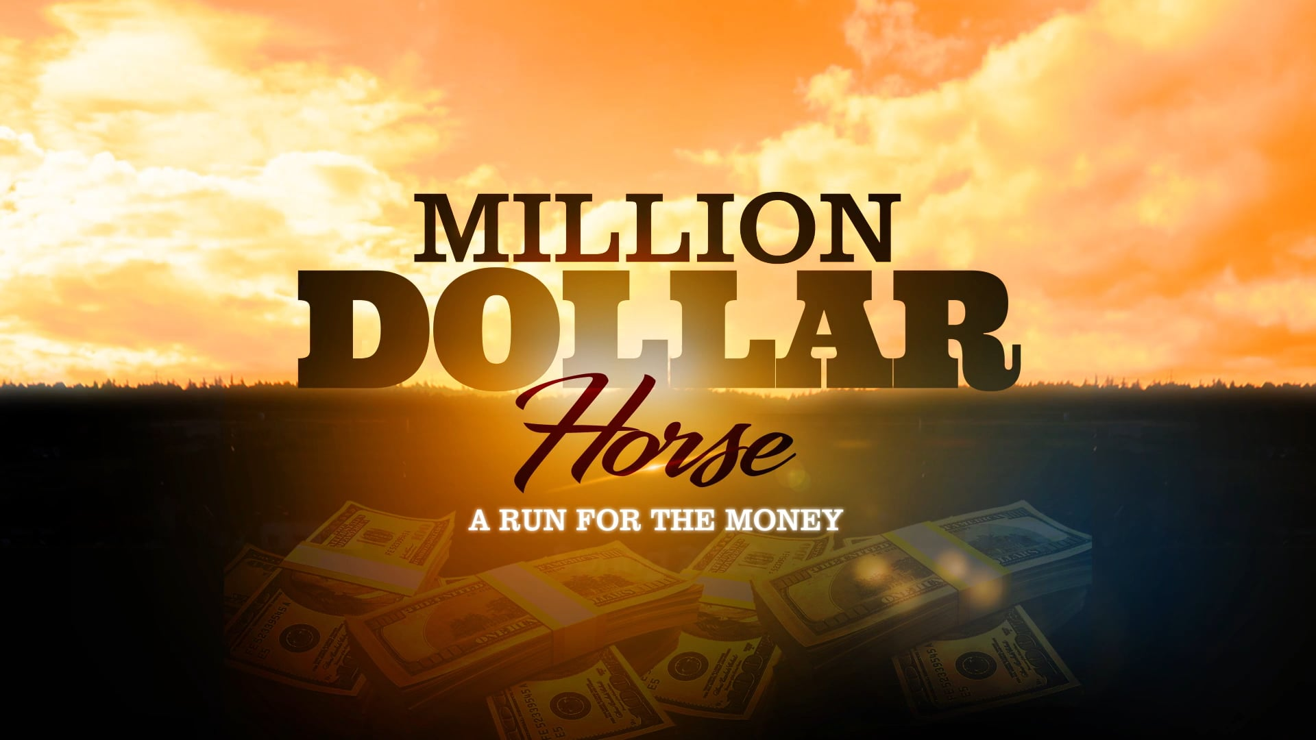 Million Dollar Horse Trailer