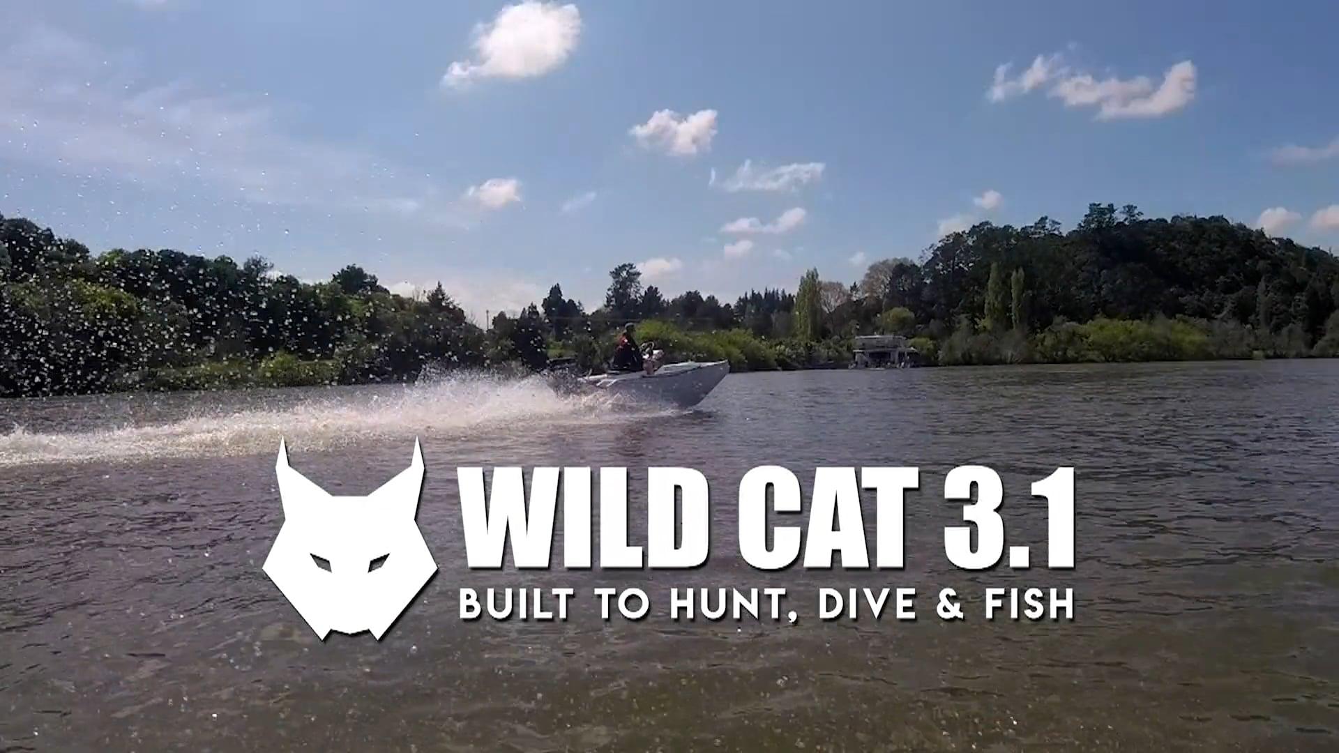 Wild Cat 3.1 promo 33s