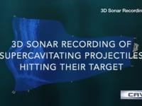 3D Sonar video