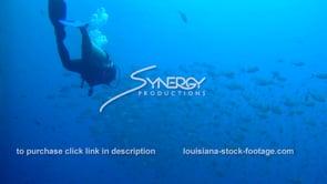 503 scuba diver swims epic large school of fish near oil rig gas platform