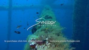 513 Louisiana texas offshore deepwater drilling marine ecosystem under oil rig gas platform