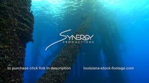 497 Nice tilt of growing coral ecosystem on legs of oil rig gas platform