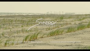 567 Awesome view grass erosion barrier on the Louisiana Coastline grand isle port fourchon video