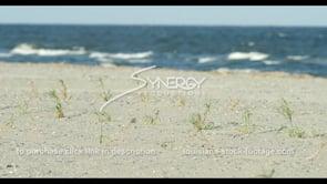 576 Rack focus Louisiana coastal beach restoration to waves in surf
