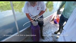 630 crawfish fisherman closing crawfish sack