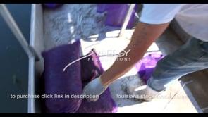 631 Live crawfish in sacks fishermans boat