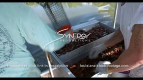 634 catching crawfish then sorting of seafood market stock video footage