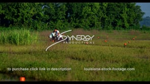 647 Louisiana crawfish fishermen checking traps
