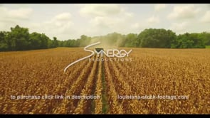 1054 sweeping epic awesome drone corn harvest