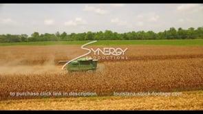 1040 Epic corn field harvest stock footage video
