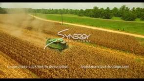 1038 corn field harvest