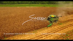 1037 corn field harvest aerial drone view