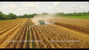 1032 Epic aerial view of corn harvest drone aerial agricultural corn field