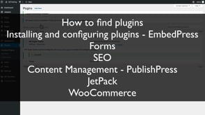 WordPress Plugin Maintenance and Conclusion