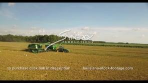 772 rice harvesting white egret birds flying
