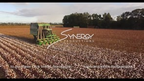 915 cotton farmer harvesting nice tracking aerial drone stock video clip