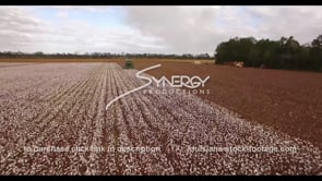 914 quick aerial drone past tractor harvesting cotton