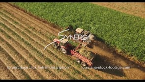 848 harvesting sugarcane overhead aerial drone