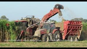 864 sugar cane farm CU harvesting