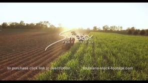 865 sugar cane harvesting Louisiana agriculture