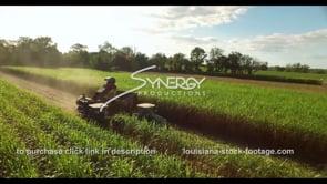869 Nice aerial sugarcane farm harvest drone video stock footage