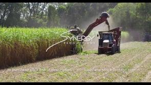 870 Nice pan to sugarcane farming harvest stock footage video