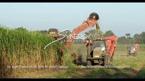 866 cutting sugar cane farmland in louisiana