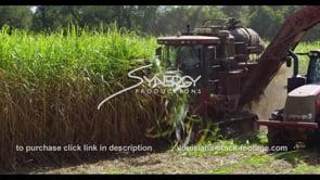 879 ECU sugarcane harvesting