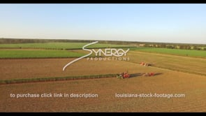 882 Nice epic sugarcane harvesting aerial drone ascent into sky
