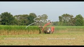 884 American sugarcane harvesting WS