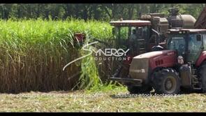 889 CU tractor in sugarcane field stock video footage